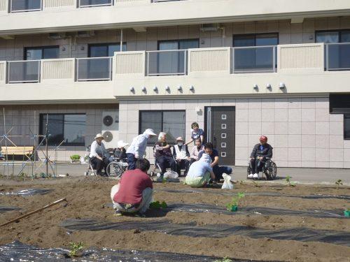 クラブ活動〜園芸クラブ〜